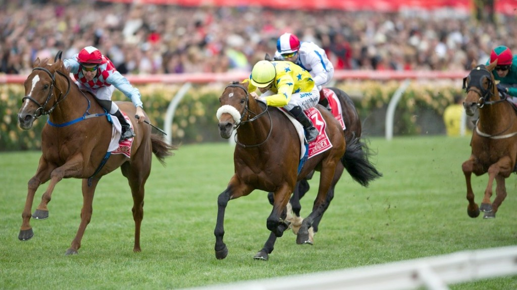 Dunaden (yellow jersey) defeated Red Cadeauz (red) in the closest finish in Melbourne Cup's history back in 2011